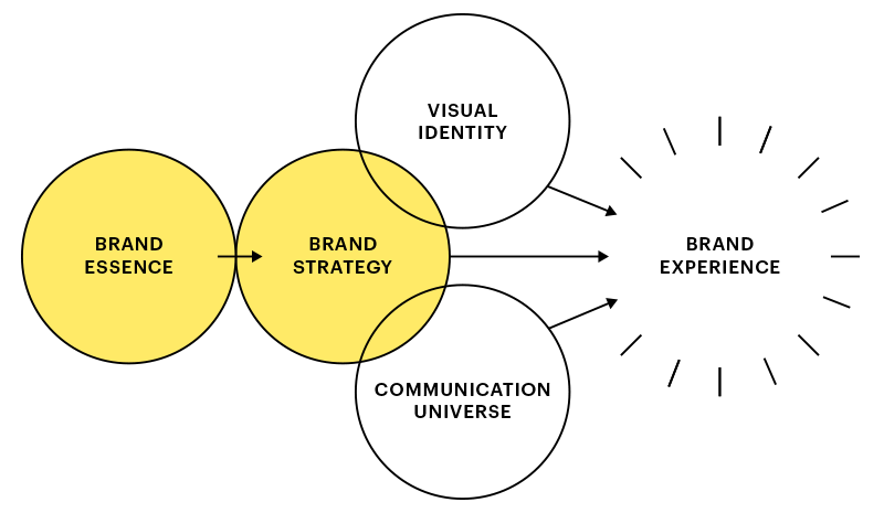NCBD brand development model
